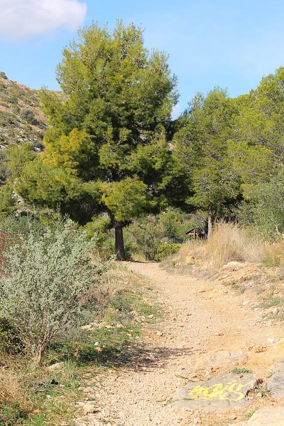 Path to the Bayren Castle, Gandia