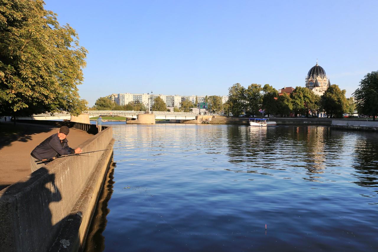 Калининград в сентябре